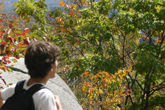 2010-Monadnock-6373.jpg